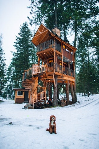 How to Build Tree House